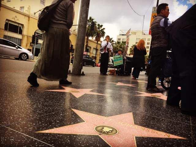 hollywoodstars